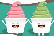 Yogurt vs Yogurt??