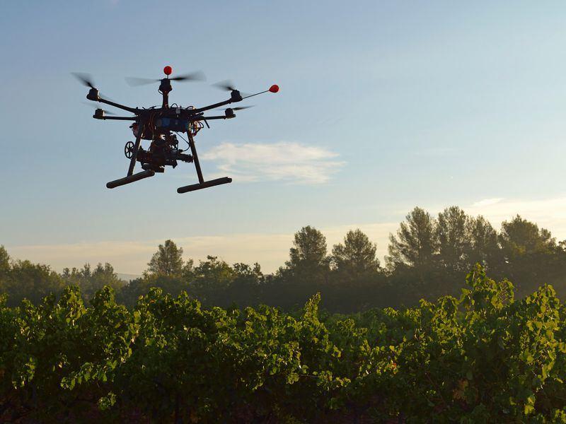 Reforestation Drones Are Changing the World!